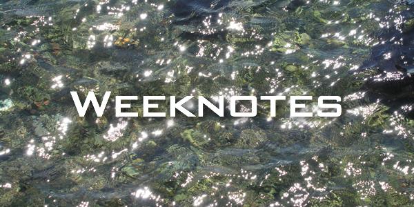 Weeknote 21