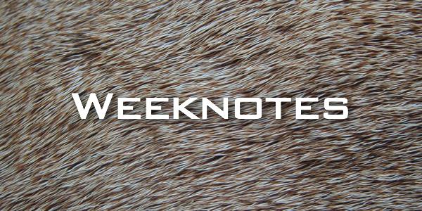 Weeknote 28/2013