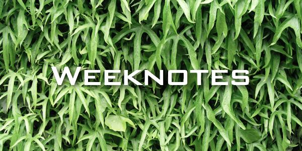 Weeknote 35/2013